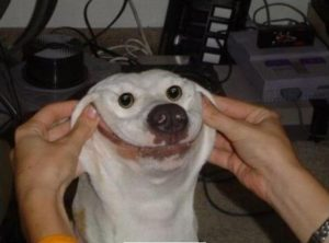Sonriendo